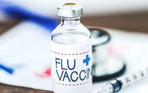 Search For Permanent Flu Vaccine