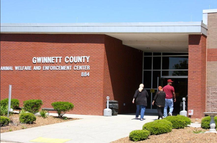 Gwinnett County Shelter Celebrates Adopt-a-Dog Month