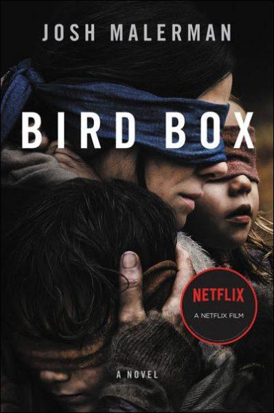 Bird Box the Netflix film