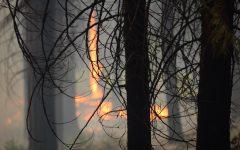 California Ablaze