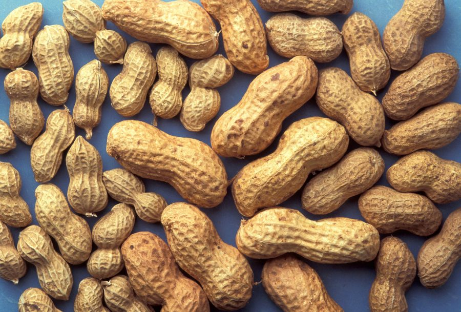 Drug To Treat Peanut Allergies in Children